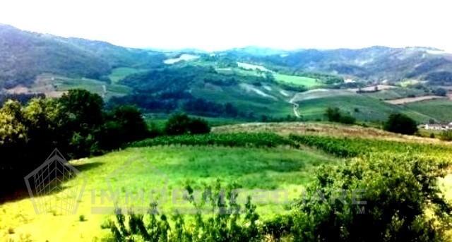 10.panoramic view - Copia - Copia